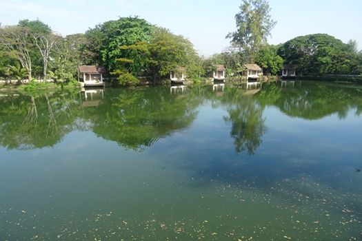 Fishing lake for sale in UdonThani.