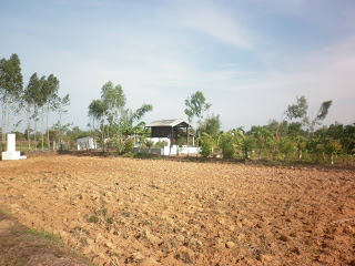 land  for sale in Udon Thani from the  owners