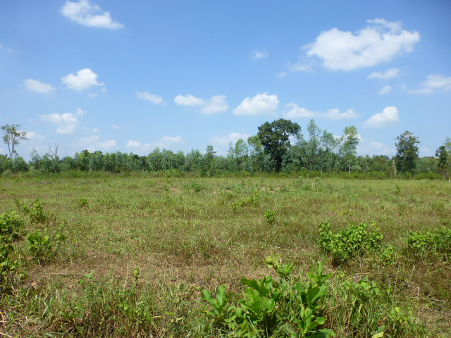 UdonThani City land for sale